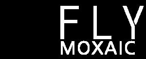 Fly Moxaic srl